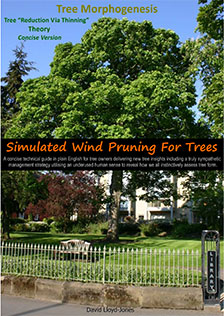 Simulated Wind Pruning concise
